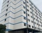 104板块 独栋6400平标准厂房 带喷淋 园区配餐厅公寓