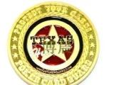 专业销售五角星图案金属徽章胸章
