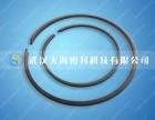 武汉天海科技石油化工搭口钢质密封环