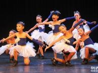 声乐 钢琴 舞蹈 表演艺考培训