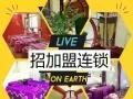 鑫鑫视力养护全国招商