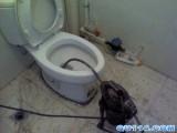 珠海维修管道丨珠海维修马桶化粪池排污