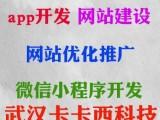 汉阳网站建设公司价格实惠便宜点-武汉卡卡西科技