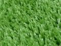 北京哪有好仿真草坪卖便宜