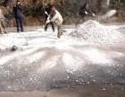 福建莆田批发天然贝壳灰 白灰 海蛎灰 牡蛎壳灰