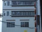 外海 可做写字楼和仓库 写字楼 170平米