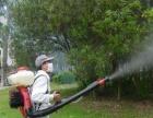 【中山安捷】专业有害生物防治除虫除蚁除四害