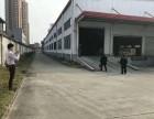 大朗成熟工业园区原房东钢构厂房9500 出租