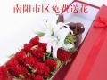 2017母亲节南阳宛城区卧龙区各县城鲜花康乃馨鲜花