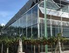 云南普洱质优抗风温室生态餐厅生态酒店专业建造厂商