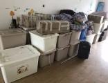 宁波宁海搬运钢琴要多少钱  宁波搬钢琴公司电话是多少?