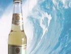 小白金啤酒 小白金啤酒加盟招商