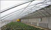 山东石榴温室大棚价格-山东结实耐用的温室大棚