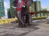 漳州机械大象靠谱厂家 大型机械大象全国出售接单