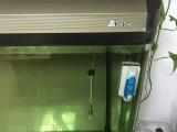 森森顶滤鱼缸