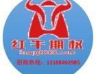 红牛期权场外个股期权招商