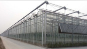 农业大棚公司推荐——新疆农业大棚建造