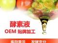 综合酵素液oem贴牌代加工 复合酵素原液批发 台湾酵素