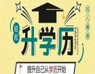 2019年网络教育北京外国语大学招生简章