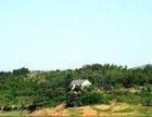 出售松滋洈水岛上个人房屋及土地