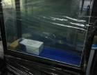 福水族宁波古玩城鱼缸销售日胜鱼缸80公分上过滤鞋柜