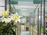 深圳罗湖桂园24小时营业急诊宠物医院 正规医院