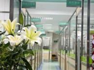 深圳罗湖桂园24小时营业急诊宠物医院(正规医院)
