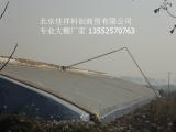 北京春秋大棚厂家 质优价廉 施工迅速 价格合理