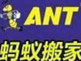 广州蚂蚁搬家公司,服务诚信,价格实惠,欢迎来电预约