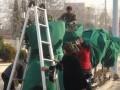 朝阳区园林绿化公司最新报价 专业绿化防寒保护标准