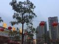 广州1000~1万平米土地招租露天餐饮