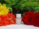 化妆品 代加工 OEM ODM 化妆品半成品 护肤 乳晕嫩红霜