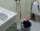 安南丽苑 3室2厅1卫 首次出租,干净整洁 随时看