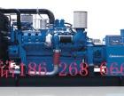 杭州应急发电机组出租 进口柴油发电机组 发电车出租