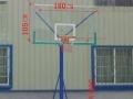 本人赔本转让各款标准篮球架-799元起