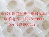 专业加工生产各类塑料养殖网