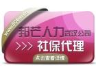 武汉专业人力资源外包公司,薪酬代理,人事外包