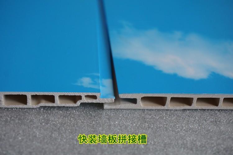 沧州速装集成墙板 竹木纤维 全屋整装