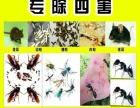 专业灭蟑螂、灭鼠、灭白蚁、消毒