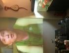 二手 短焦投影机 奥图码EX525ST 家庭影院 家用精选