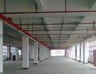 同安集中工业区一楼1100平和2300平出租