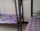 南联双龙直租单间床位拎包入住包水电网费干净舒适宽敞
