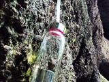 爆款 带盖子透明玻璃水杯 密封防漏耐热玻璃杯子创意便携运动水瓶