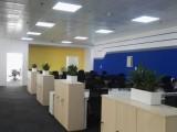 朝阳绿植租摆绿化养护办公室植物租赁