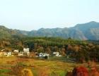宏村四个景区中间的房子