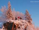 这个冬天 你去雪乡了吗