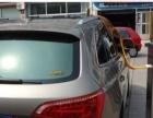 供应不锈钢型汽车消毒机设备 汽车养护用品