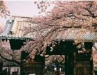 江宁日语口语培训,日语一对一培训,零基础速成班