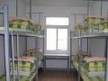 小区短租房 床位单间
