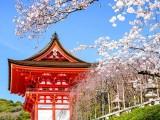 大连日本留学 大连哪里可以免中介费办日本留学
